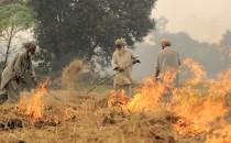 Burning (IMAGE)