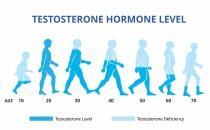 Testosterone hormone levels chart,