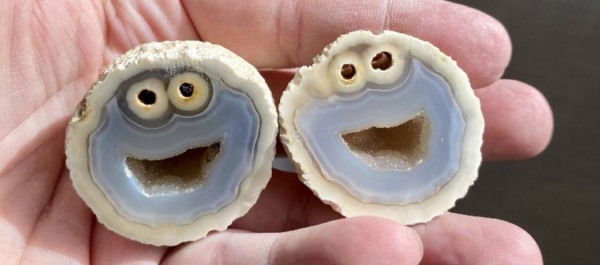 Cookie Monster Look alike Rock Formation could Cost Over $10,000