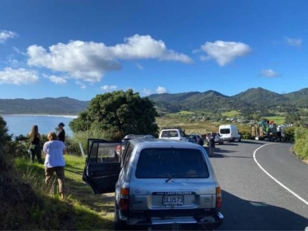 New Zealanders On Alert For Coastal Wave Surges Following Series Of Earthquakes