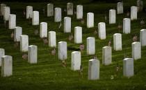 Veterans' graves