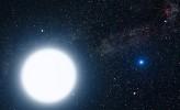 White Dwarfs and Alien Life