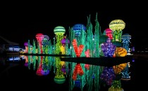 What to Expect at Dubai Garden Glow, All That Will Be a Vacation to Remember