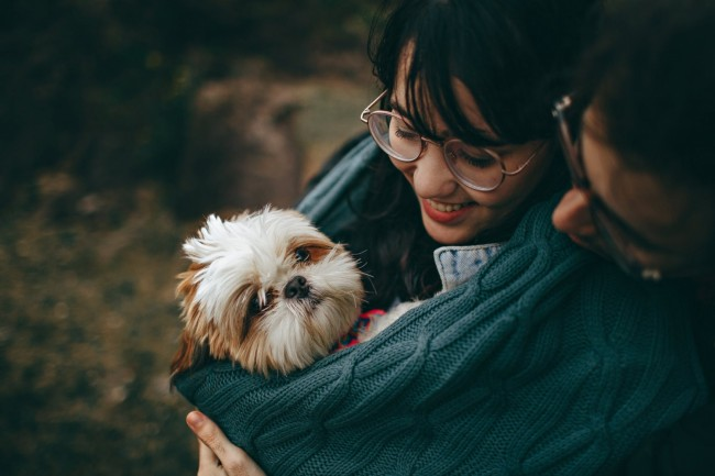 6 Most Common Dog Health Problems You Must Know