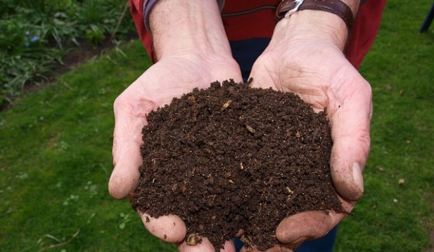 Funeral Home in the US turns Human Bodies to Compost Open for Business