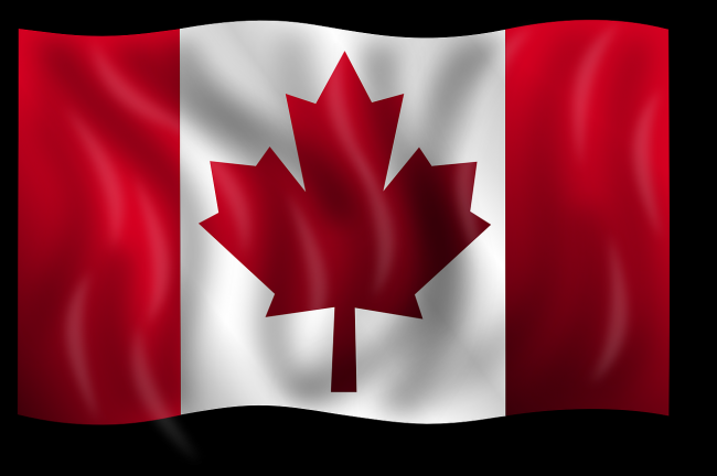 The COVID-19 Effects on Canadian Immigration in 2021