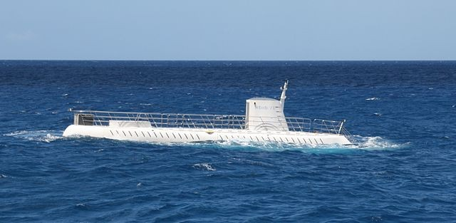 Man Constructs Submarine During Lockdown and Dives to Lake Bottom