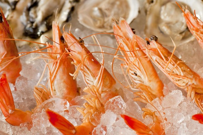 FDA Announces Nationwide Recall of Frozen Shrimp Due to Salmonella Contamination