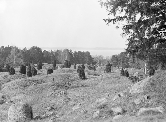 Seven Viking Tombs from the 10th Century were Discovered by Swedish Archeologists with Remains of Eight People